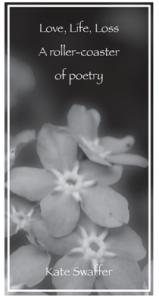 kates_book_cover