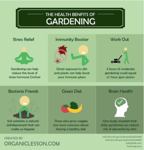 Gardening_infographic