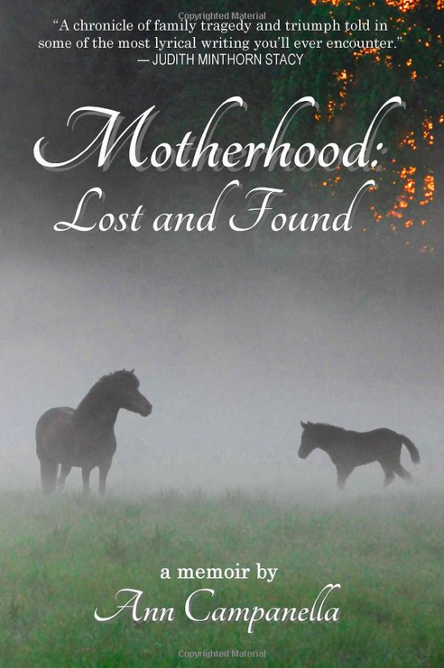 _ann_c_motherhood_lost_and_found_book_cover